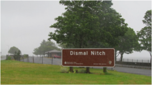 Dismal Nitch, WA